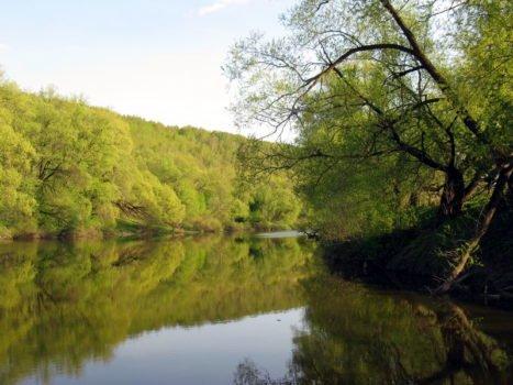 Osyotr_River