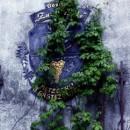 Tolkien Goes Vogelsberg: Fantastischer Sonntagsausflug nach … ULRICHSTEIN
