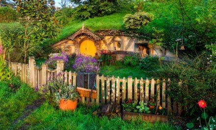 Die eigene Hobbithöhle in 3 Tagen