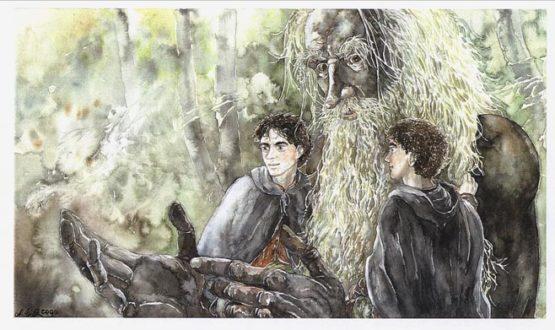 Treebeard - Bild: Anke Eissmann