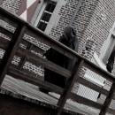 Blitzdings – der DTG Fotowettbewerb