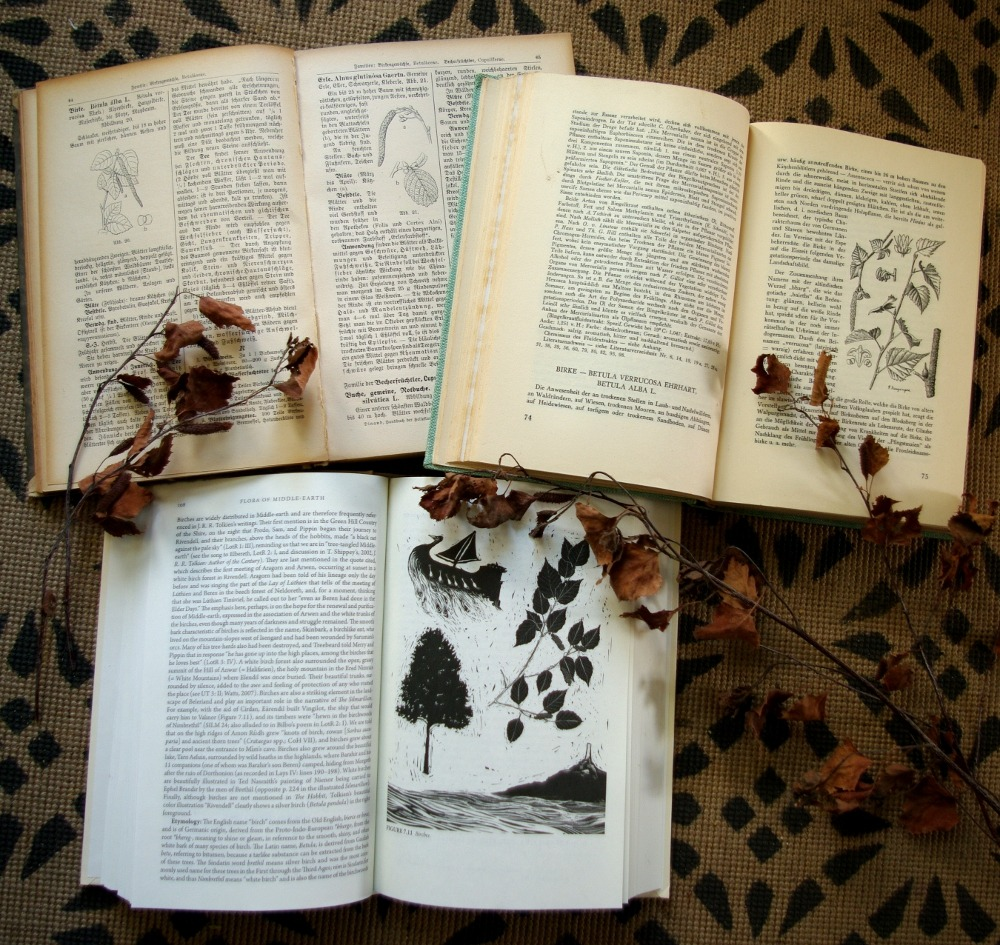 flora of middle-earth kräuterbücher