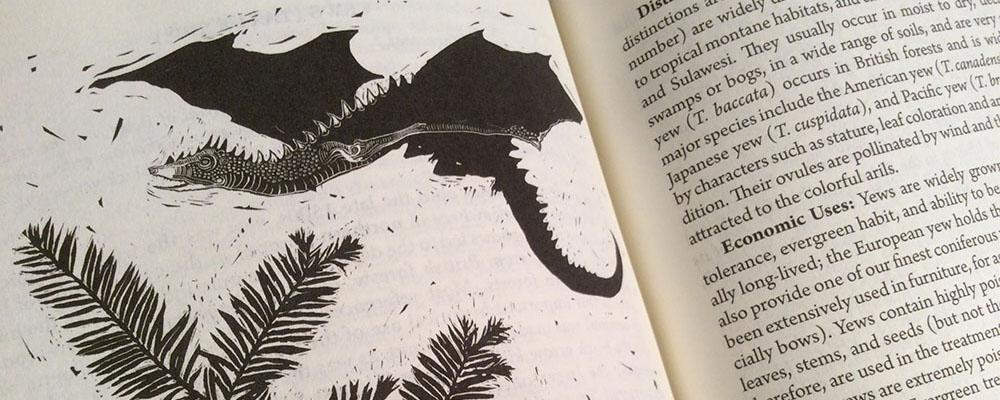 Flora of Middle-Earth - Zeichnung - Annika Röttinger
