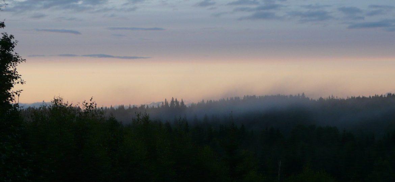 DTG-Fotowettbewerb: Düsterwalds Ostgrenze
