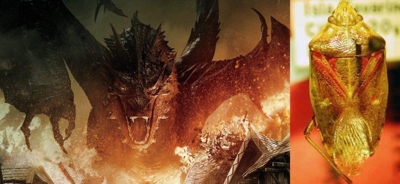 Wanze nach Tolkiens Drachen benannt.