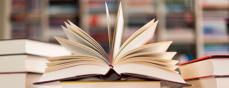 Literaturwissenschaft & Deutungen